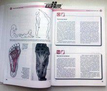 Томас В. Майерс. Анатомические поезда. Миофасциальные меридианы для мануальной и спортивной медицины. Фото 3