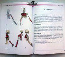 Томас В. Майерс. Анатомические поезда. Миофасциальные меридианы для мануальной и спортивной медицины. Фото 5