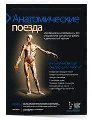 Томас В. Майерс. Плакаты Анатомические поезда: Миофасциальные меридианы для специалистов мануальной работы и двигательной терапии.
