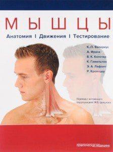 К.-П. Валериус, А.Франк, Б.К. Колстер. Мышцы. Анатомия. Движения. Тестирование. Фото 1